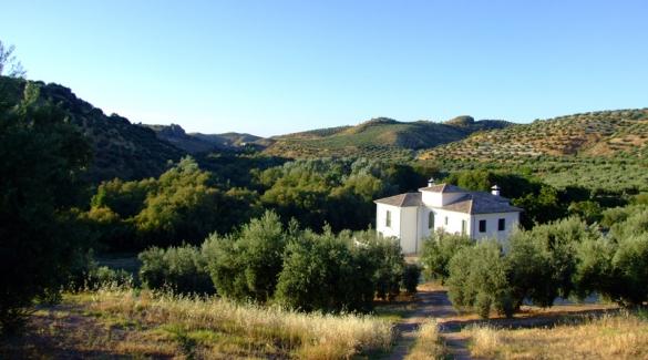 Casa Olea B&B Andalucia Spain