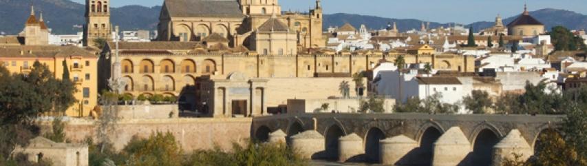 Mezquita cordoba andalucia