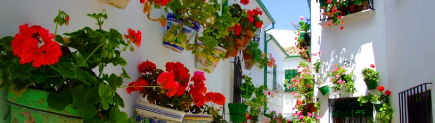 Best places to go in Andalucia in 2014