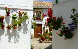 Casa Olea hotel Priego de Cordoba Cruces de Mayo festival