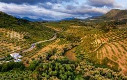 Casa Olea boutique hotel in rural Andalusia near Granada and Cordoba