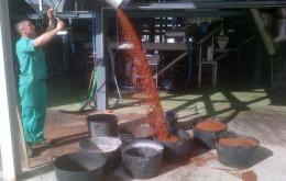 Casa Olea eco guesthouse Andalucia olive biomass boiler