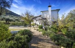 Casa Olea B&B Andalucia entrance gardens