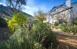 Casa Olea ländlichen Hotels Andalusien Gärten Olivenhain