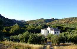 Casa Olea Bed & Breakfast between Granada & Cordoba Andalucia