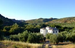 Casa Olea Bed & Breakfast zwischen Granada und Cordoba Andalusien