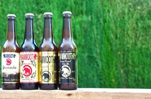 Andalousie artisanale: sur le sentier de la bière artisanale en Espagne…  - Artisan Brasseur 12